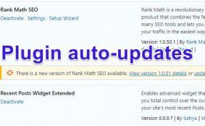 ข้อดี-ข้อเสีย WordPress Plugin auto update