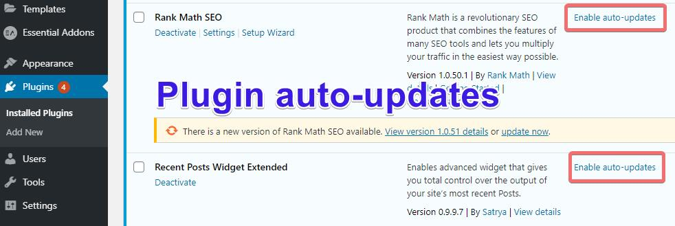 WordPress-Plugin-auto-update