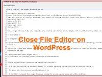 วิธีปิด File editor WordPress